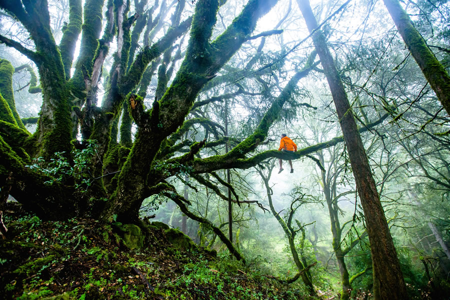 Costa Rica – Endless Adventure for Young Explorers